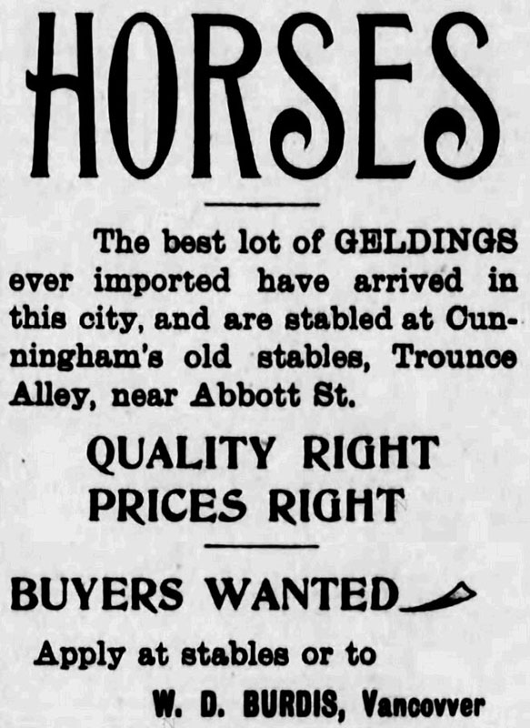 Horses for sale in Trounce Alley. Daily World 3 April 1895.