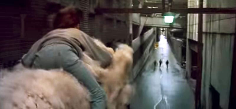 Trounce Alley scene from the 1984 film, Neverending Story.