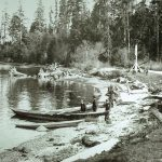Lumberman's Arch Area Stanley Park 1910