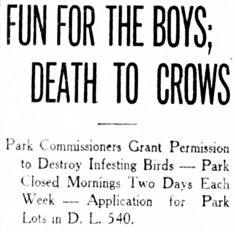 """Fun for the boys, death to the crows"" headline from the Daily World, 10 March 1910."
